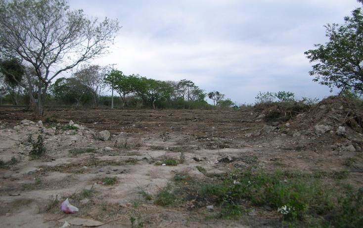 Foto de terreno comercial en venta en  , rinconada, emiliano zapata, veracruz de ignacio de la llave, 1266805 No. 07