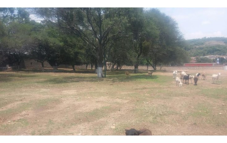 Foto de terreno comercial en venta en  , rio blanco, zapopan, jalisco, 1443607 No. 15