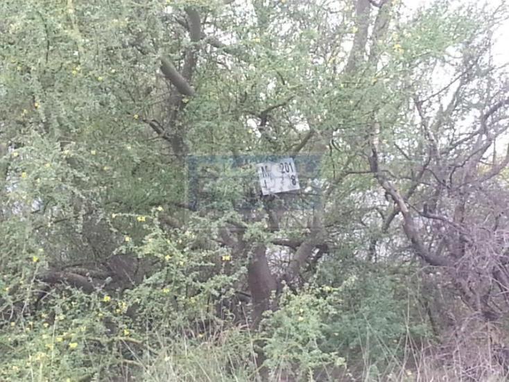 Foto de terreno habitacional en venta en  , portal de zuazua, general zuazua, nuevo león, 467670 No. 03