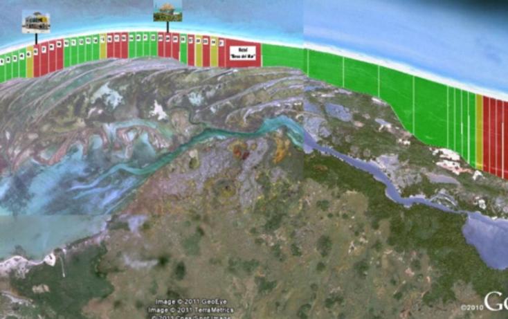 Foto de terreno habitacional en venta en  , rio lagartos, río lagartos, yucatán, 1069219 No. 07