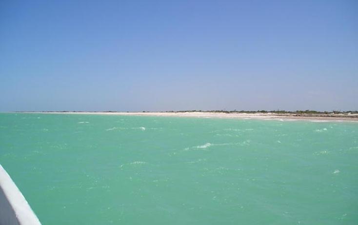 Foto de terreno comercial en venta en  , rio lagartos, r?o lagartos, yucat?n, 1085995 No. 05