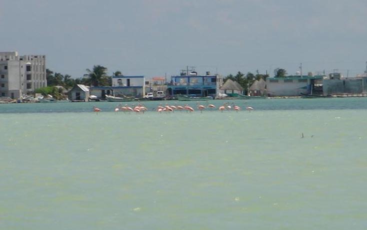 Foto de terreno comercial en venta en  , rio lagartos, r?o lagartos, yucat?n, 1085995 No. 07