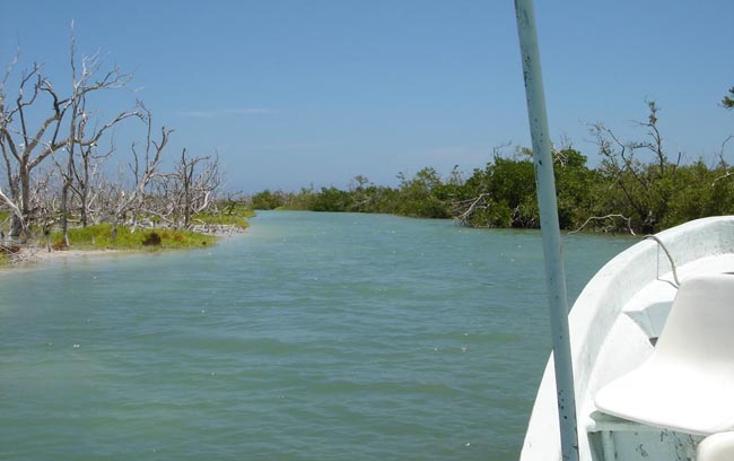 Foto de terreno comercial en venta en  , rio lagartos, r?o lagartos, yucat?n, 1085995 No. 16