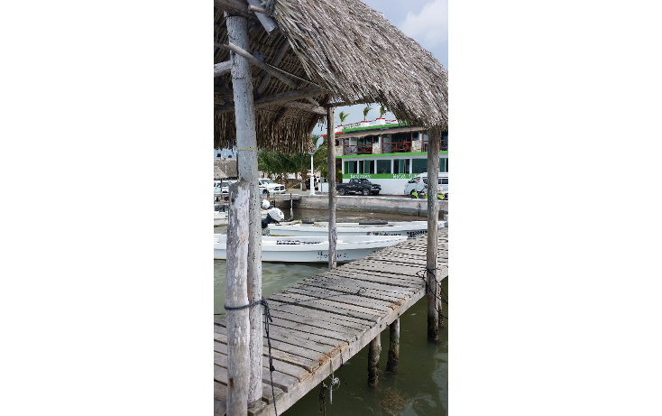 Foto de terreno habitacional en venta en  , rio lagartos, río lagartos, yucatán, 1100075 No. 02