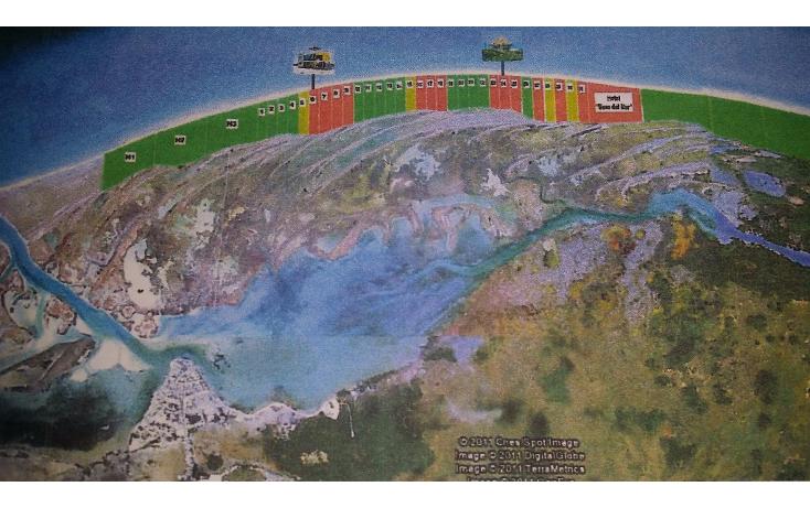 Foto de terreno habitacional en venta en  , rio lagartos, río lagartos, yucatán, 1100075 No. 06
