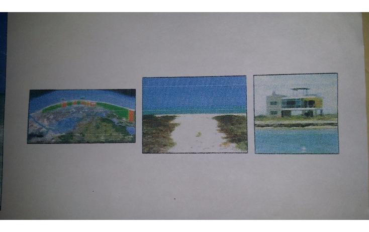 Foto de terreno habitacional en venta en  , rio lagartos, río lagartos, yucatán, 1100075 No. 07