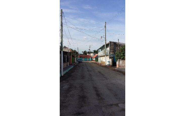 Foto de terreno habitacional en venta en  , rio lagartos, río lagartos, yucatán, 1100075 No. 08