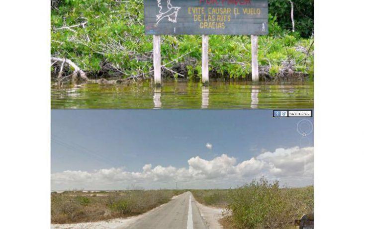 Foto de terreno habitacional en venta en, rio lagartos, río lagartos, yucatán, 1969347 no 02