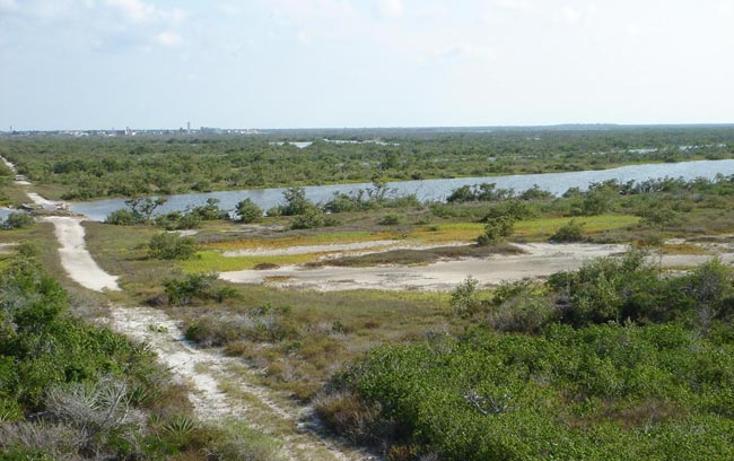 Foto de terreno comercial en venta en  , rio lagartos, r?o lagartos, yucat?n, 941087 No. 15
