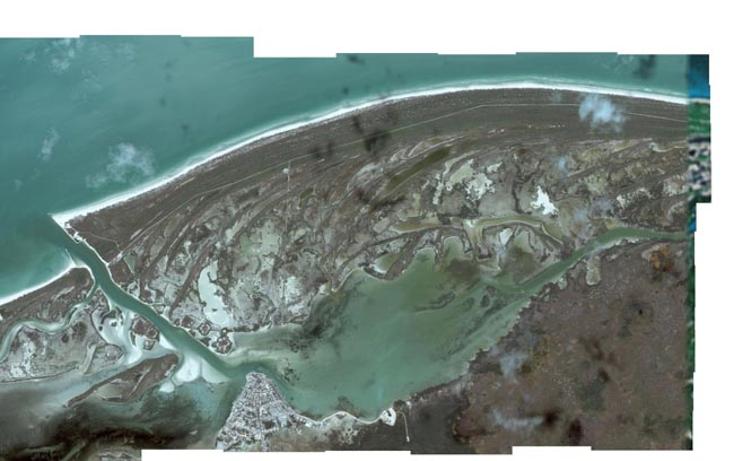 Foto de terreno comercial en venta en  , rio lagartos, r?o lagartos, yucat?n, 941087 No. 20