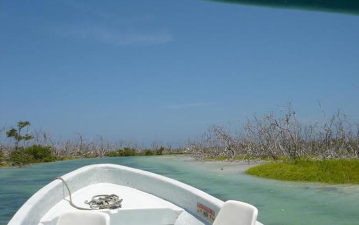 Foto de terreno comercial en venta en  , rio lagartos, r?o lagartos, yucat?n, 941087 No. 21