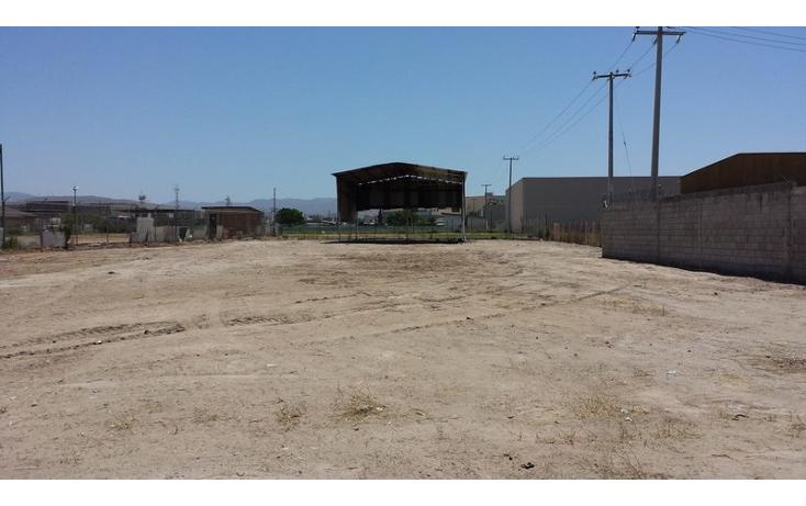Foto de terreno comercial en renta en  , río tijuana 3a etapa, tijuana, baja california, 1315085 No. 01