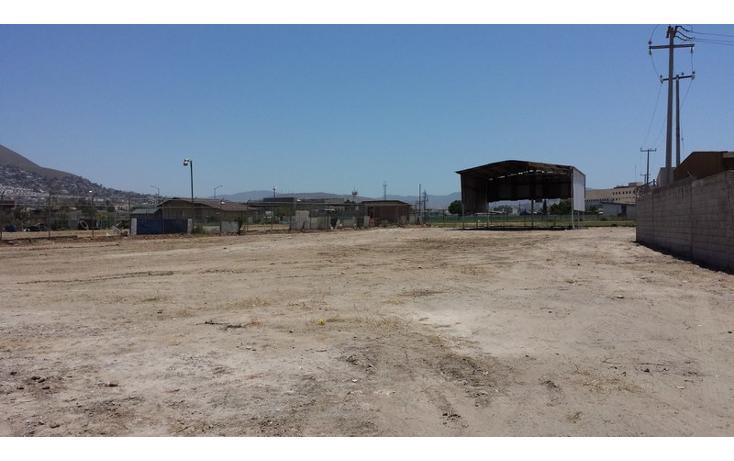 Foto de terreno comercial en renta en  , río tijuana 3a etapa, tijuana, baja california, 1315085 No. 03