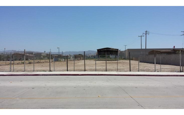 Foto de terreno comercial en renta en  , río tijuana 3a etapa, tijuana, baja california, 1315085 No. 04