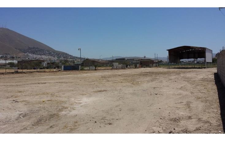 Foto de terreno comercial en renta en  , río tijuana 3a etapa, tijuana, baja california, 1315085 No. 05