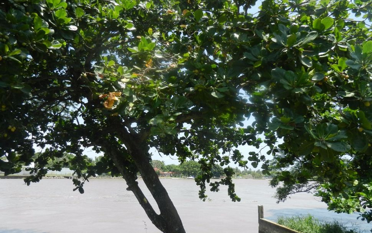 Foto de terreno habitacional en venta en  , rivera de la condesa, boca del r?o, veracruz de ignacio de la llave, 1140923 No. 07