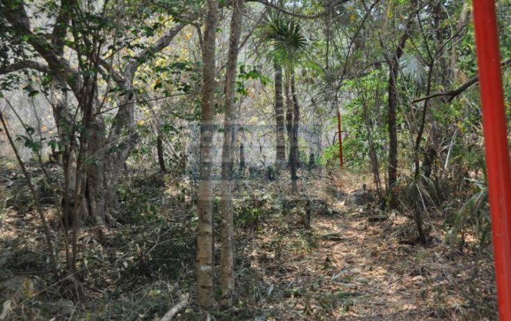 Foto de terreno habitacional en venta en rno tejormo, garza blanca, puerto vallarta, jalisco, 740769 no 08