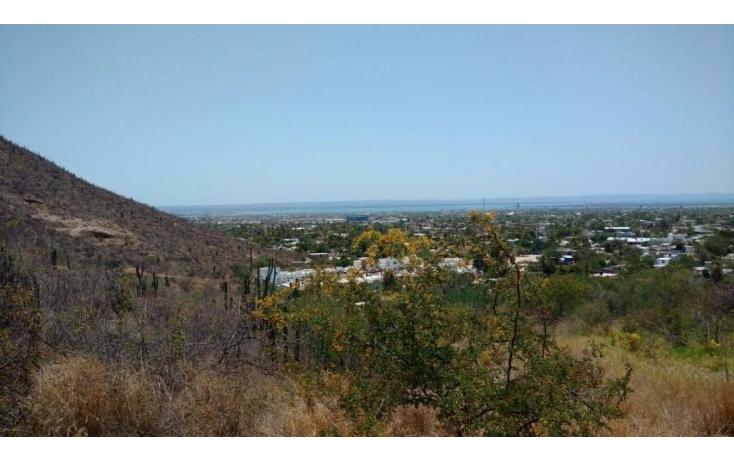 Foto de terreno habitacional en venta en  , roma, la paz, baja california sur, 1050717 No. 13