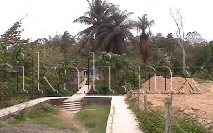 Foto de terreno habitacional en venta en rosales nonumber, jazm?n, tuxpan, veracruz de ignacio de la llave, 573424 No. 07