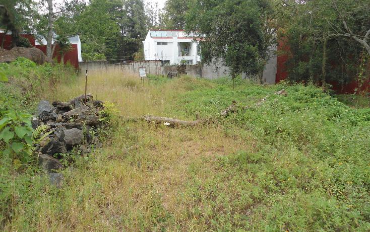 Foto de terreno habitacional en venta en  , rub? ?nimas, xalapa, veracruz de ignacio de la llave, 1297013 No. 03