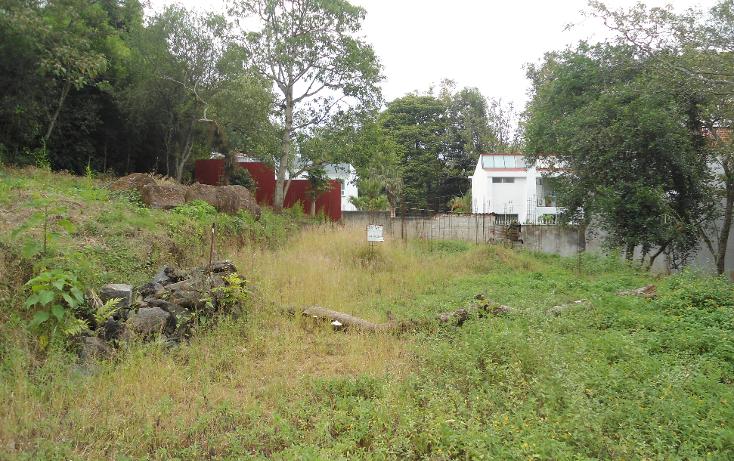 Foto de terreno habitacional en venta en  , rub? ?nimas, xalapa, veracruz de ignacio de la llave, 1297013 No. 04
