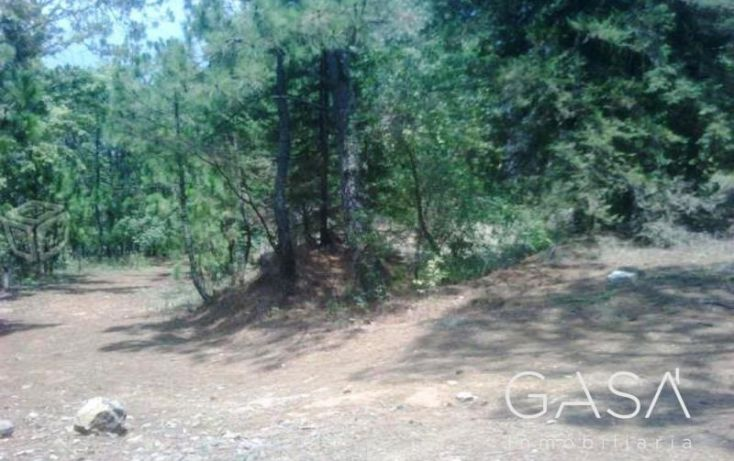 Foto de terreno habitacional en venta en ruta del bosque, avándaro, valle de bravo, estado de méxico, 1431441 no 02