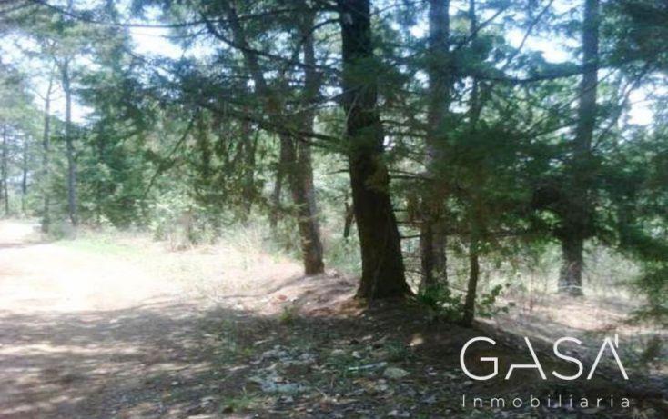 Foto de terreno habitacional en venta en ruta del bosque, avándaro, valle de bravo, estado de méxico, 1431441 no 03