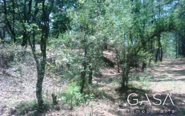 Foto de terreno habitacional en venta en ruta del bosque, avándaro, valle de bravo, estado de méxico, 1431441 no 05