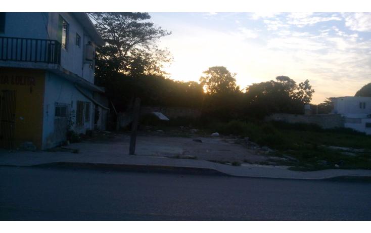 Foto de terreno habitacional en renta en  , sabancuy, carmen, campeche, 1324067 No. 05