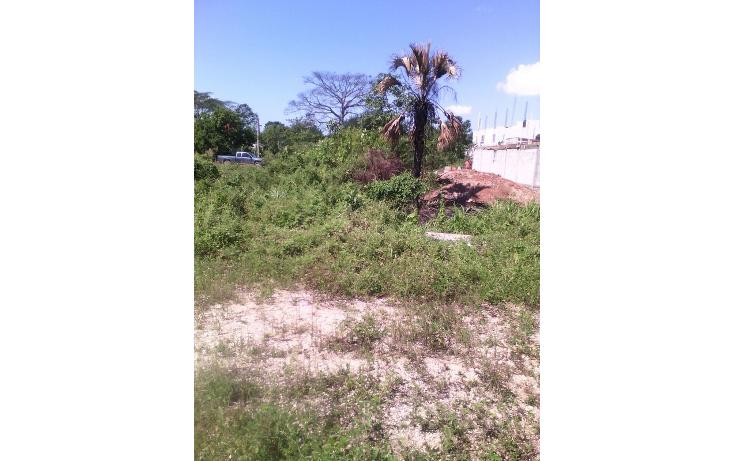 Foto de terreno habitacional en venta en  , sabina, centro, tabasco, 1661033 No. 02