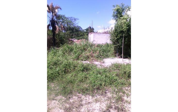 Foto de terreno habitacional en venta en  , sabina, centro, tabasco, 1661059 No. 02
