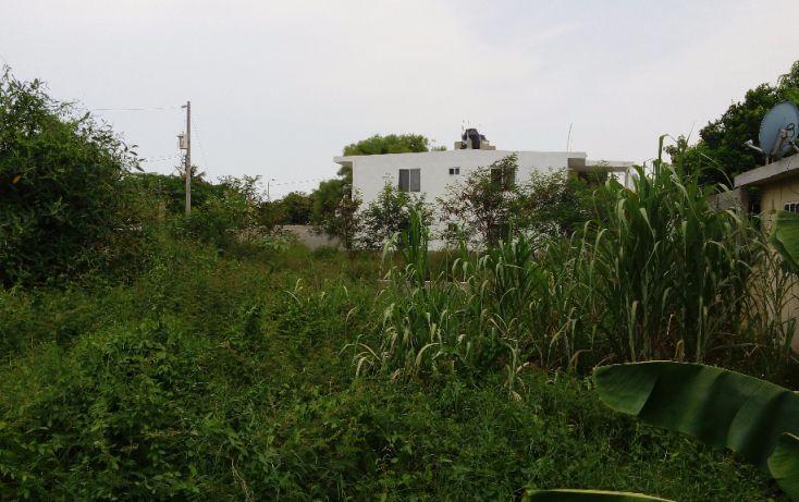 Foto de terreno habitacional en venta en, sahop, ciudad madero, tamaulipas, 1294547 no 02