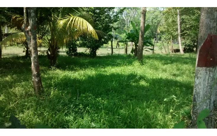 Foto de terreno habitacional en venta en  , saloya 2 secci?n, nacajuca, tabasco, 1969419 No. 02