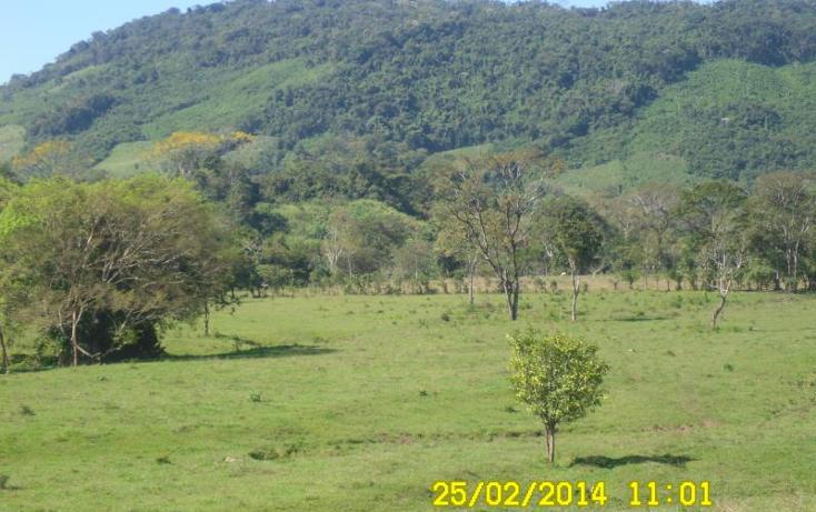 Foto de terreno habitacional en venta en  , salto de agua, salto de agua, chiapas, 1478823 No. 02