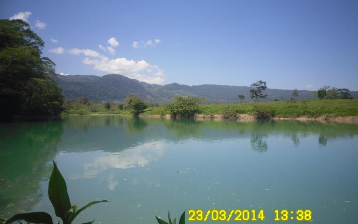 Foto de terreno habitacional en venta en  , salto de agua, salto de agua, chiapas, 1704912 No. 02