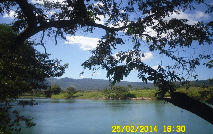 Foto de terreno habitacional en venta en  , salto de agua, salto de agua, chiapas, 1704912 No. 04
