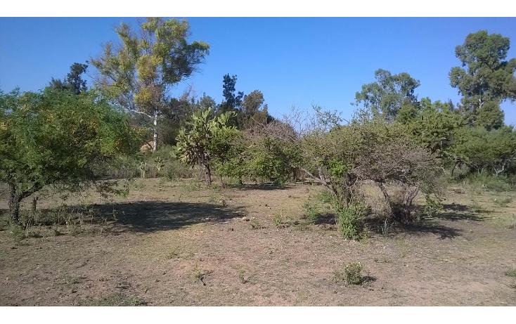 Foto de terreno habitacional en venta en  , salto de los salados, aguascalientes, aguascalientes, 1048589 No. 06