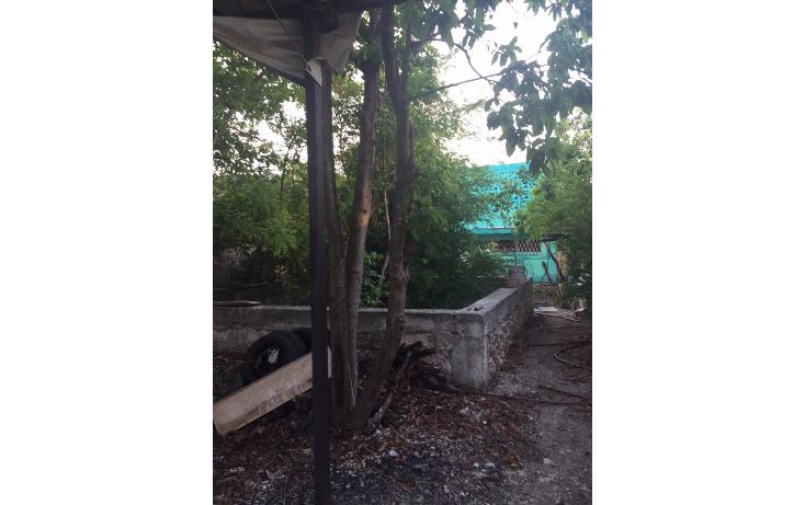 Foto de casa en venta en  , salvador alvarado sur, m?rida, yucat?n, 1186547 No. 15