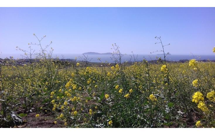 Foto de terreno habitacional en venta en  , salvatierra, tijuana, baja california, 1939579 No. 11