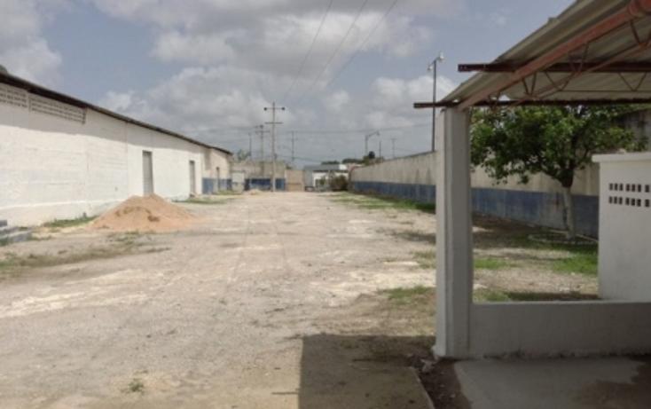 Foto de nave industrial en renta en  , sambula, mérida, yucatán, 1144179 No. 09
