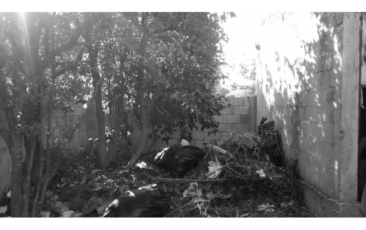 Foto de casa en venta en  , sambula, mérida, yucatán, 1665564 No. 13