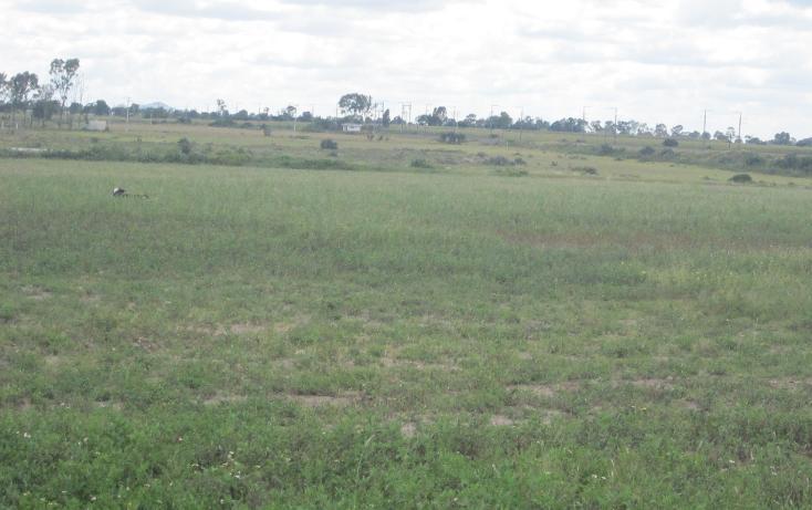 Foto de terreno comercial en venta en  , san agust?n el cuervo, polotitl?n, m?xico, 1462365 No. 04
