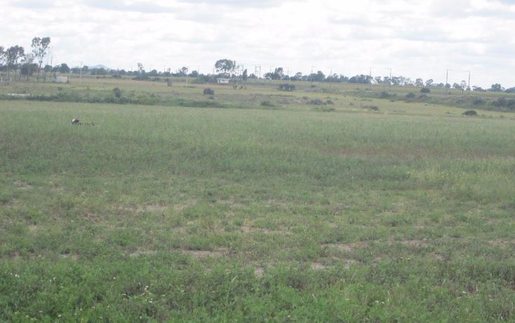 Foto de terreno comercial en venta en  , san agustín el cuervo, polotitlán, méxico, 1609338 No. 01