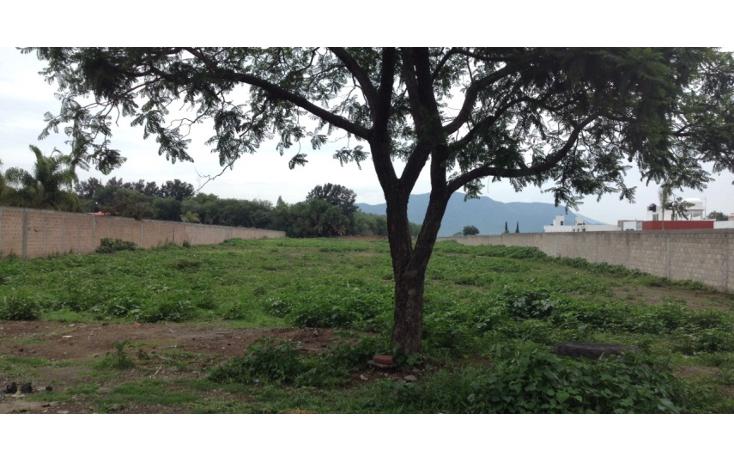 Foto de terreno comercial en venta en  , san agustín huixaxtla, atlixco, puebla, 2004490 No. 04