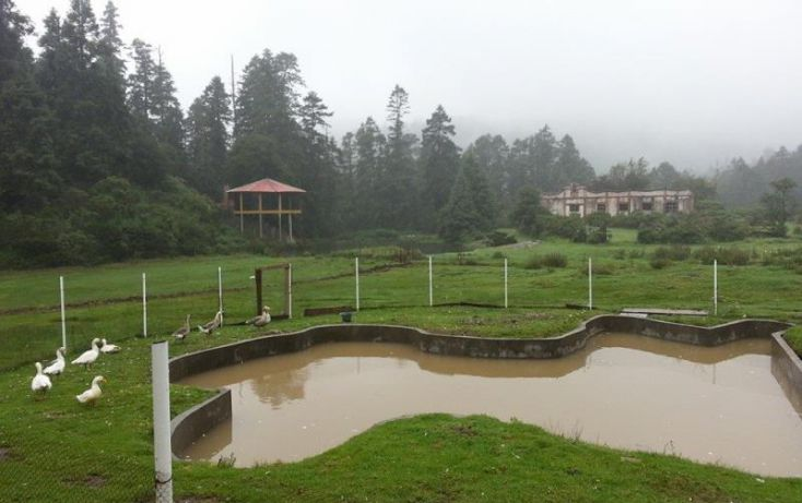 Foto de terreno habitacional en venta en, san agustín, mineral del monte, hidalgo, 1089475 no 05