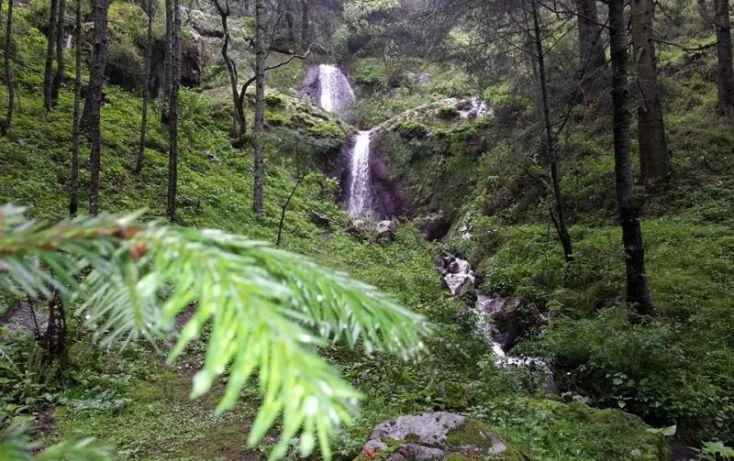 Foto de terreno habitacional en venta en, san agustín, mineral del monte, hidalgo, 1089475 no 06