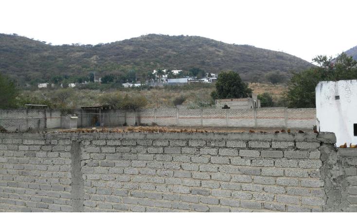 Foto de rancho en venta en  , san agustin, tlajomulco de zúñiga, jalisco, 1295821 No. 05