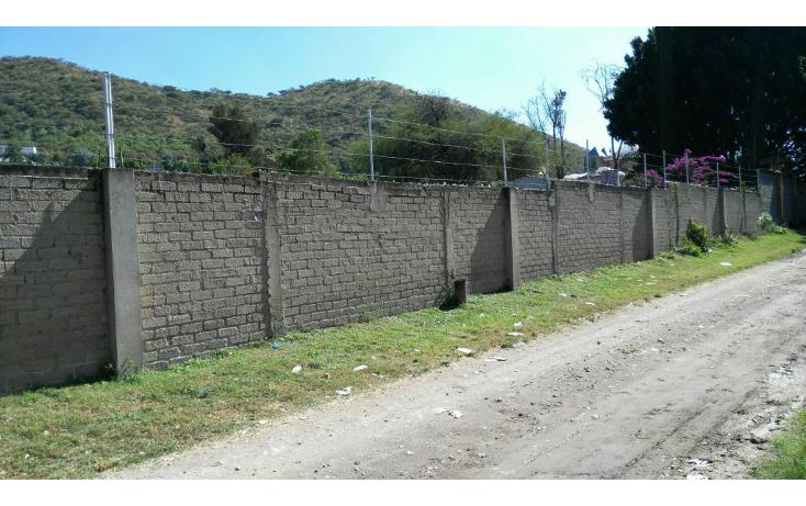Foto de rancho en venta en  , san agustin, tlajomulco de zúñiga, jalisco, 1295821 No. 07