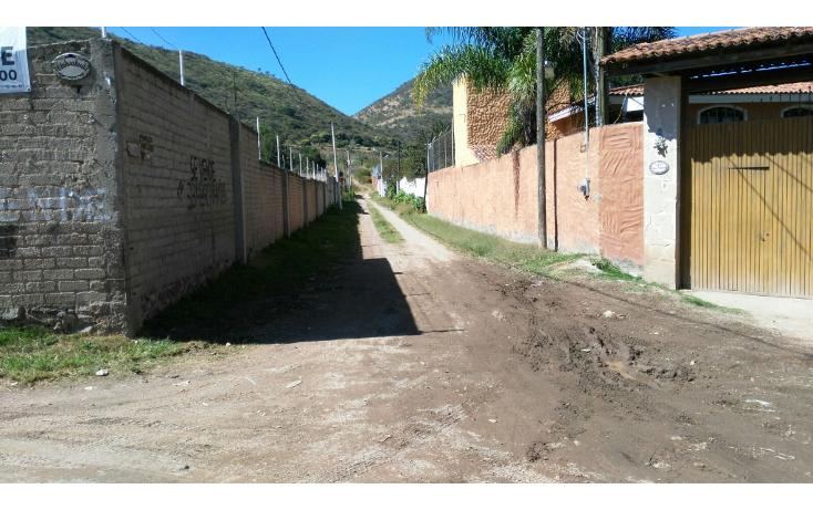 Foto de rancho en venta en  , san agustin, tlajomulco de zúñiga, jalisco, 1295821 No. 12