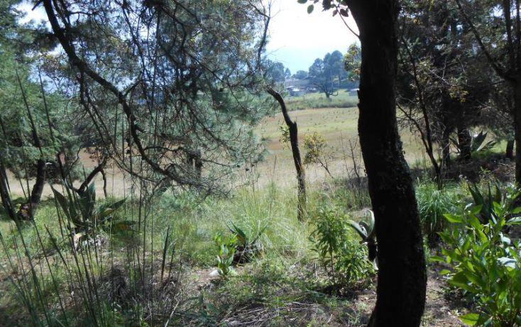 Foto de terreno habitacional en venta en, san agustín, xalatlaco, estado de méxico, 1540310 no 04